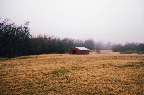 Seasonal Field