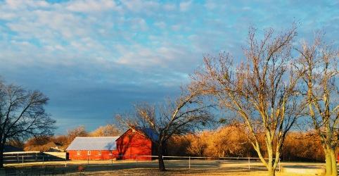 Autumn Barns
